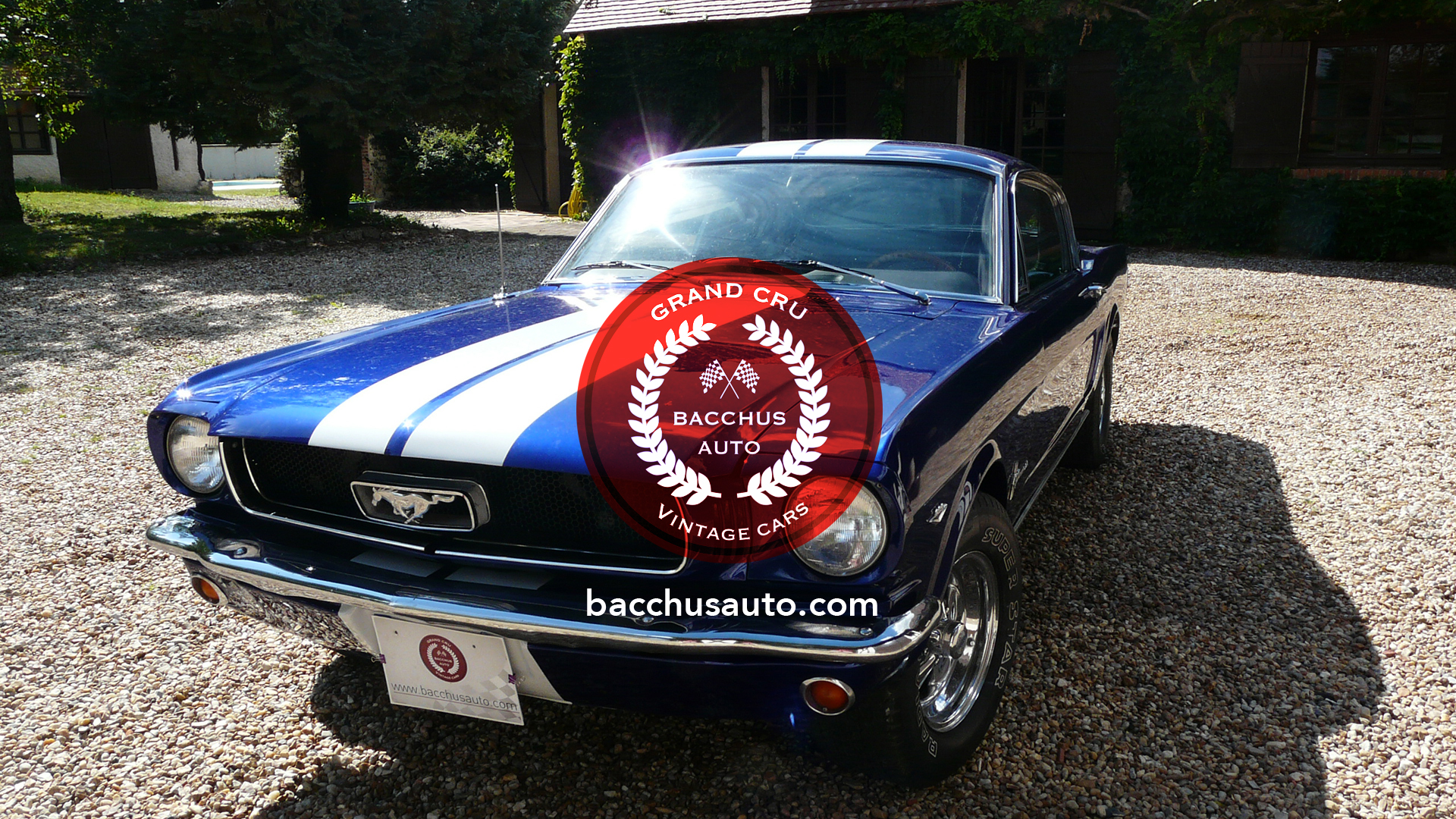 1965 FORD MUSTANG FASTBACK 289 V8 (27)